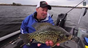 Glorvigen Crappie Screengrab