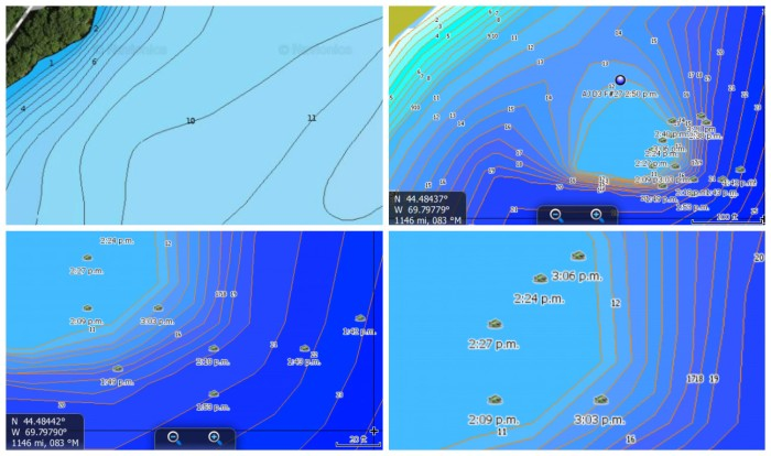 Alton-HDS-9-hump-vs-navionics-COLLAGE