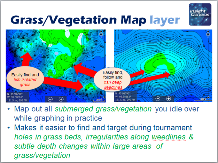 Grass-Vegetation Map Layer