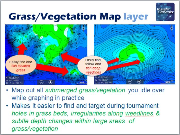 Grass-Vegetation Map Layer